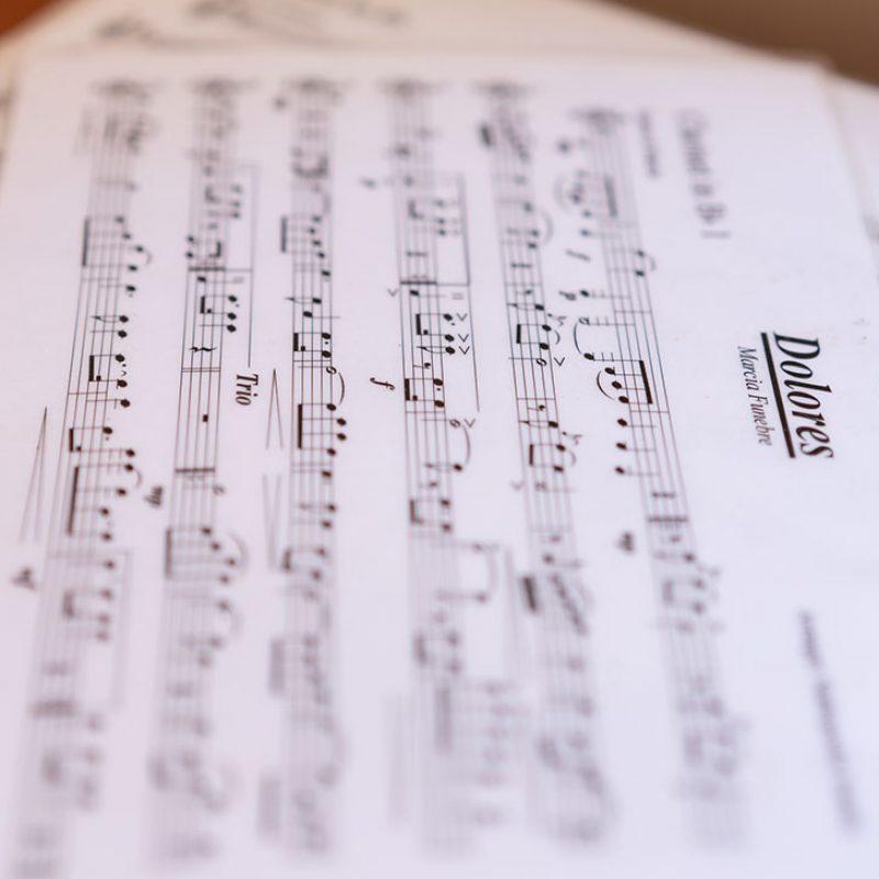 Φιλαρμονική Ορχήστρα Δήμου Πύλου-Νέστορος - Μουσική